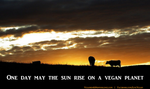 may-the-sun-rise-on-a-vegan-planet2