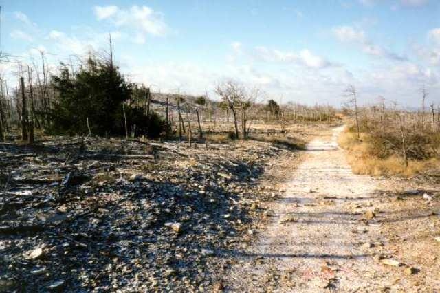 pa-wasteland