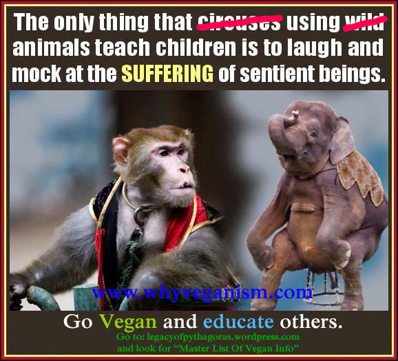 10441179_10152271482887017_613685663544323024_n?w=640 abolitionist vegan memes from the legacy the legacy of pythagoras