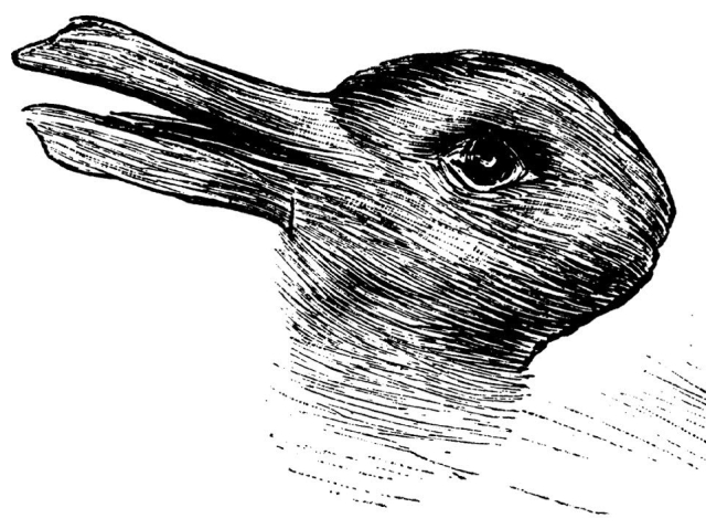 duck-rabbit-e1553964028987.jpg